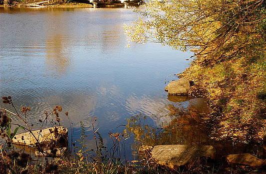 Water beauty by Jocelyne Choquette