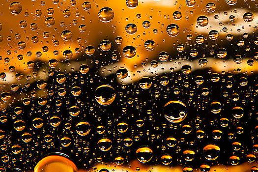 Water Drops by Gene Linzy