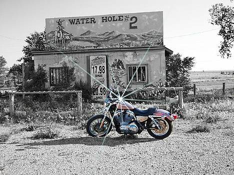 Water Hole #2 by Trevor Hilton