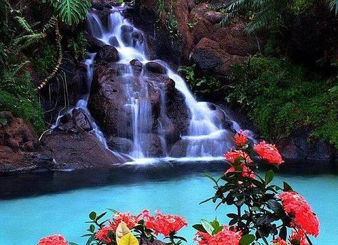 Waterfall by Yaa Hughes