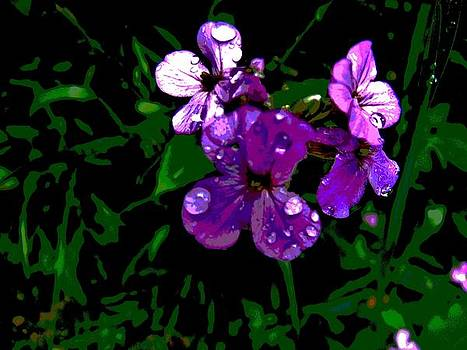 Wet Purple Flowers by Mark Malitz