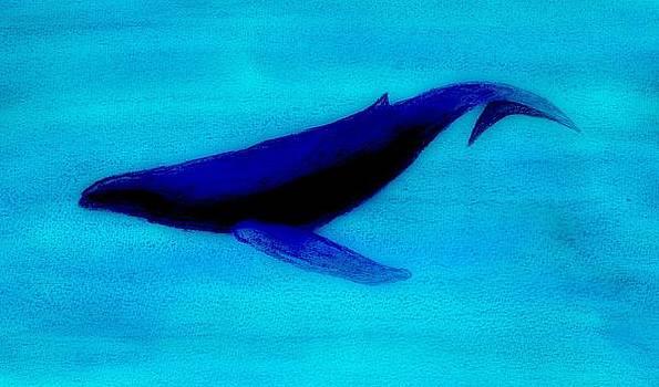 Whale Dive - Digital Chalk by Brett Smith