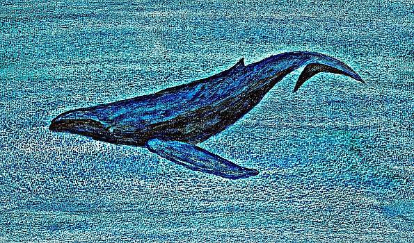 Whale Dive - Digital Crayon by Brett Smith