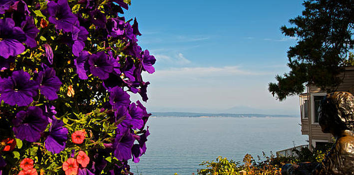 Whidbey Island View by wDm Gallery