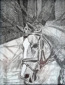 White Cross by Paul Bokvel Smit
