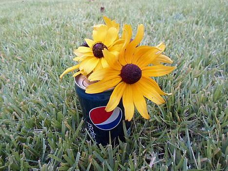 Wild Flowers by Jenna Mengersen