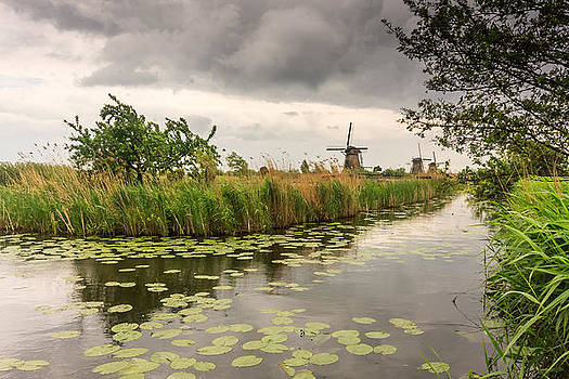 Windmills by the canal by Susan Leonard