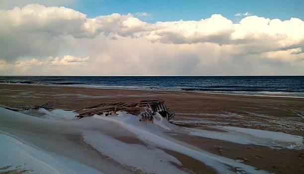 Winter Beach by Rita Tortorelli