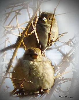 Winter Birds in Tree by Mikki Cucuzzo