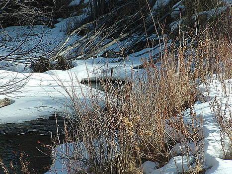 Winter Stream by Yvette Pichette