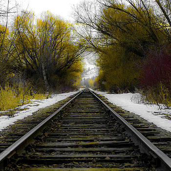 Winter Tracks by Rod Sterling