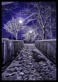 Winter Walkway by Vincent Dwyer