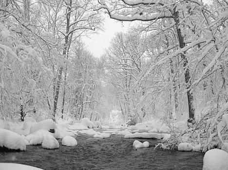 Winter Wonderland by Leah Kimper