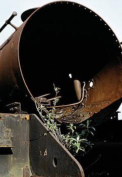 Withdrawn Steam Locomotive UK. 1975 by David Davies