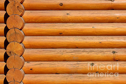 Wooden Logs Wall Background by Kiril Stanchev