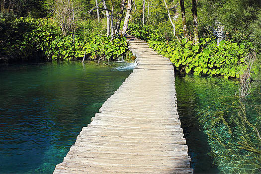 Wooden Pathway in Plitvice Lakes  by Kiril Stanchev
