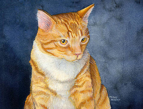 Yellow kitty by Terry Albert
