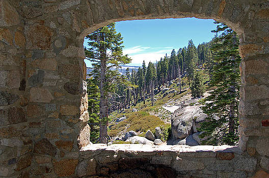Yosemite National Park by Bhupendra Singh