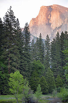 Yosemite's Half Dome at Sunset by Bruce Gourley