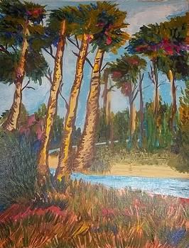 A Lonely Path by Iris Devadason