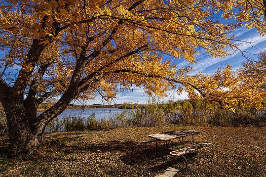 Scott Bean -  A Place To Enjoy Fall