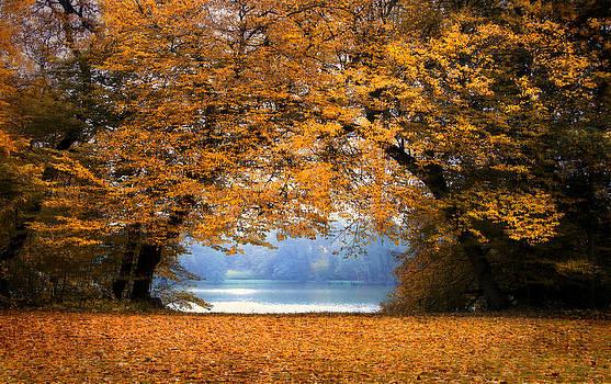 A Port Autumn Leaves by Henrik Petersen