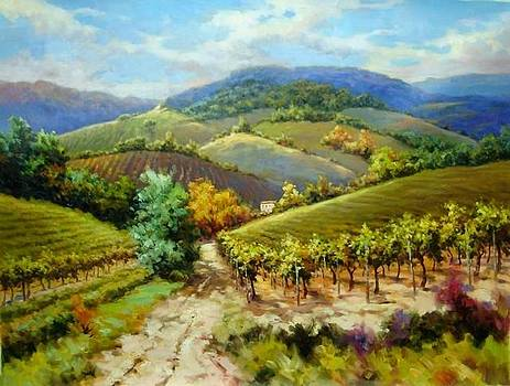 Autumn Wine Country Tuscany by David Kim