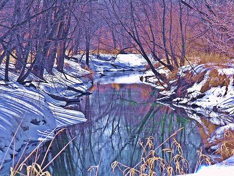 Baraboo River Winter by Dave Dresser