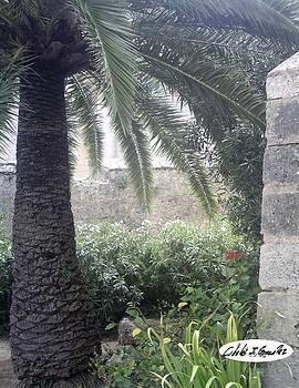 Beauty Near A Spanish Castle by Cibeles Gonzalez