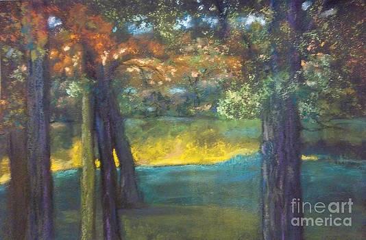 Blazing Autumn Light by Sandra McClure