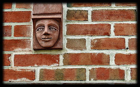 Brick Face by Wayne Gill