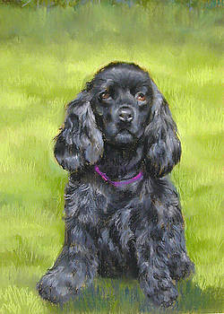 Budwood the Black Cocker Spaniel by Lenore Gaudet