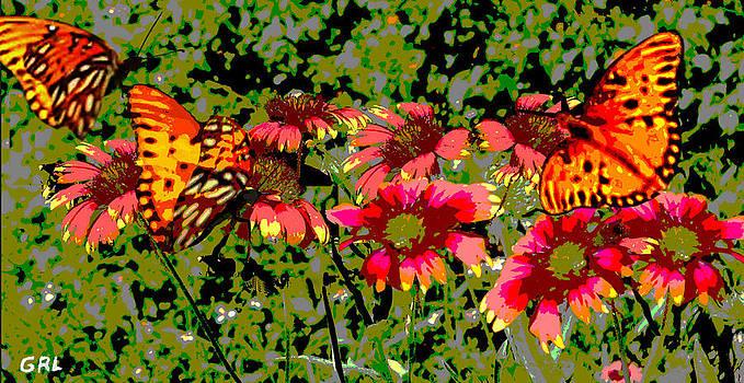 G Linsenmayer -  BUTTERFLIES AND WILDFLOWERS FLORIDA CONTEMPORARY DIGITAL ART