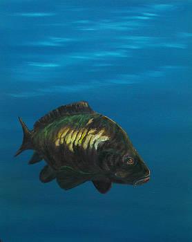 Carp Fishing by Cynthia Adams