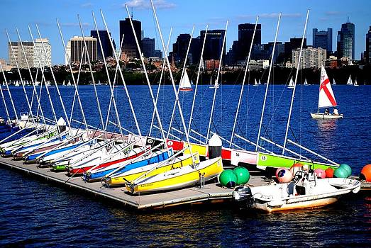 Charles River Sailboats Boston by Ronald Bartels