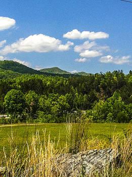 Cherokee hill skyline  by Robert J Andler