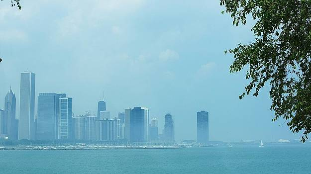 Rosemarie E Seppala -  Chicago Skyline And Marina On Lake Michigan