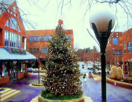 Rick Todaro -   Christmas Scene Forrestal Village