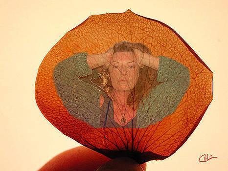 Colette V Hera  Guggenheim  -  Deep Life Reflection