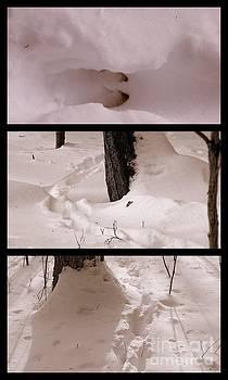 Deer Run In A Vertical  Winter Collage by Eunice Miller