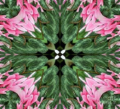 Design by Kathleen Struckle