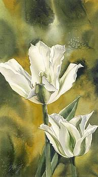 Alfred Ng -  Double white tulips