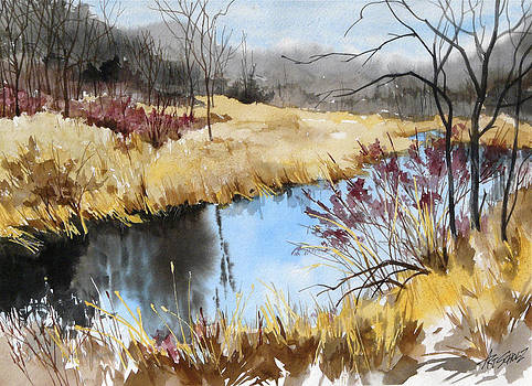 Fall Stream by Art Scholz
