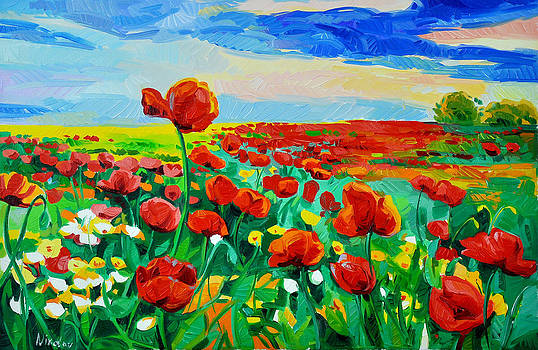 Fields of flowers by Ivailo Nikolov