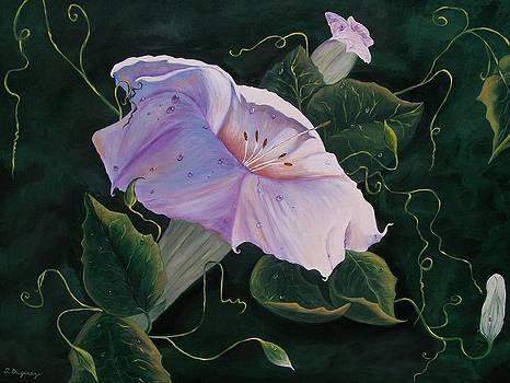 First  Trumpet Flower  of Summer by Sharon Duguay