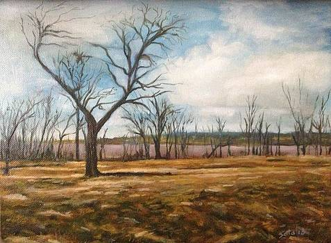 Fort Totten Park- Overlooking Little Neck Bay by Victor SOTO