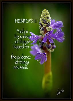 Hebrews by Shayne Johnson Fleming