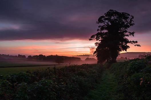 Hele Payne farm at dawn by Pete Hemington
