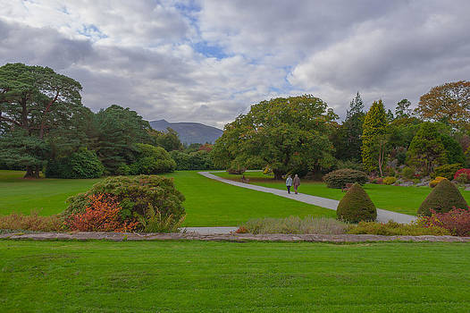 A Irish Garden by Pro Shutterblade