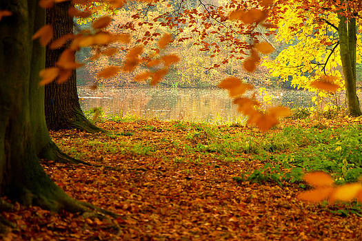 Love autumn always by Kathy Chadwick